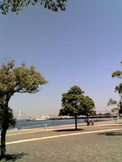 いま横浜です。