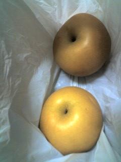 梨もらった!